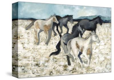 Salt River Wild-Kari Taylor-Stretched Canvas Print