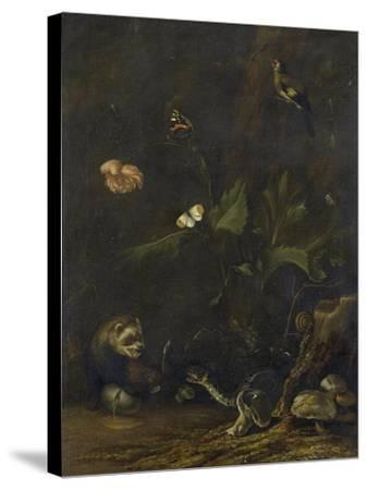Animals and Plants-Anthonie Van Borssom-Stretched Canvas Print