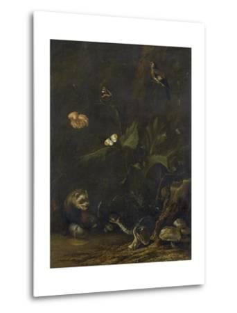 Animals and Plants-Anthonie Van Borssom-Metal Print