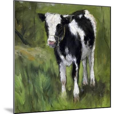 A Black and White Spotted Calf, Standing in a Meadow-Geo Poggenbeek-Mounted Art Print