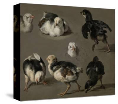 Seven Chicks-Melchior d'Hondecoeter-Stretched Canvas Print