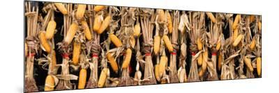 China 10MKm2 Collection - Corn Drying-Philippe Hugonnard-Mounted Photographic Print