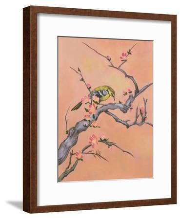 Asian Bird Illustration I-Judy Mastrangelo-Framed Art Print