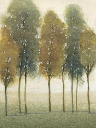 Beyond the Trees II--Framed Art Print