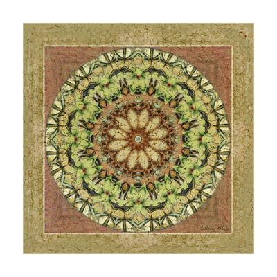 Floress Mandala IV-Catherine Kohnke-Art Print