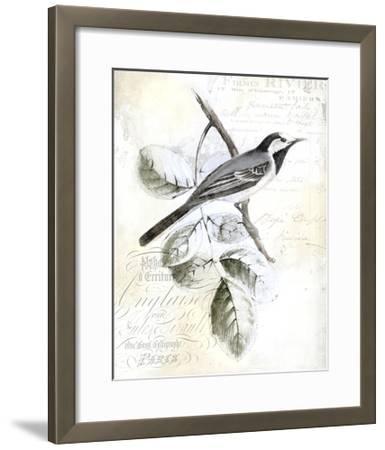 Rustic Gould I-Studio W-Framed Art Print