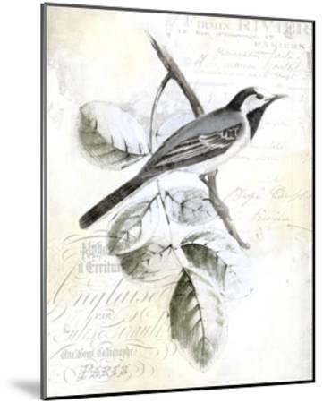 Rustic Gould I-Studio W-Mounted Art Print