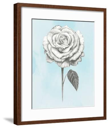 Graphite Rose III-Grace Popp-Framed Art Print