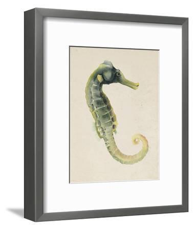 Sea Dweller VI-Grace Popp-Framed Art Print