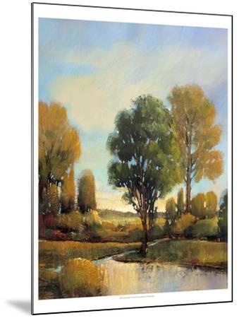 Riverside Light I-Tim O'toole-Mounted Art Print