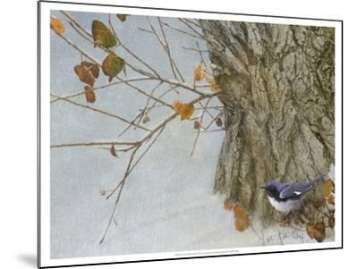 Late Snow Warbler-Chris Vest-Mounted Art Print