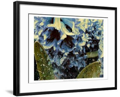 Silverbell II-Danielle Harrington-Framed Art Print