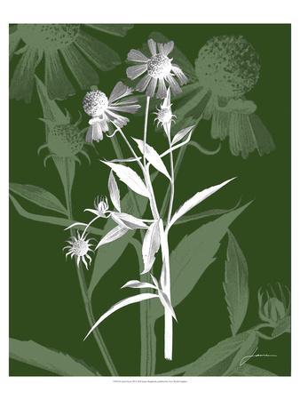 Jewel Stems III-James Burghardt-Framed Art Print
