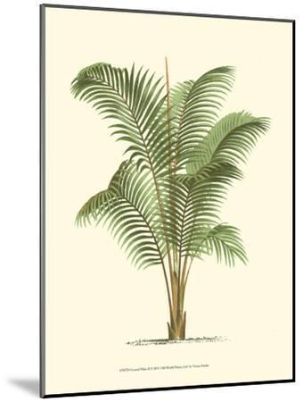 Coastal Palm II--Mounted Art Print