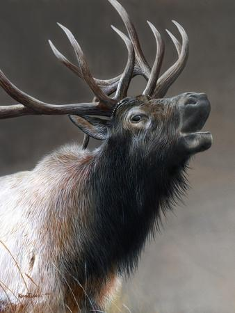 American Icon- Elk-Kevin Daniel-Framed Art Print