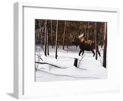 Winter Forage-Kevin Daniel-Framed Art Print