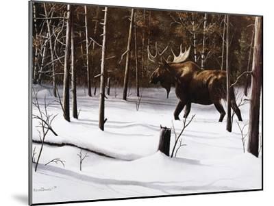 Winter Forage-Kevin Daniel-Mounted Art Print