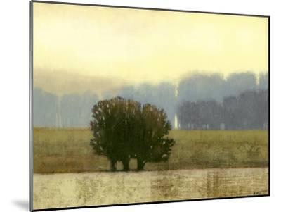 Villa Park I-Norman Wyatt Jr^-Mounted Art Print