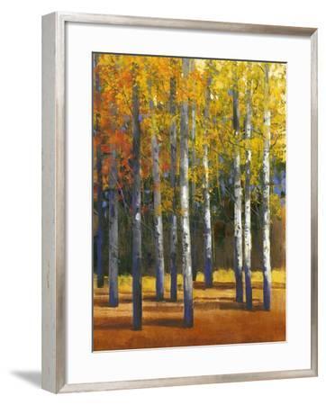 Fall in Glory I-Tim O'toole-Framed Art Print