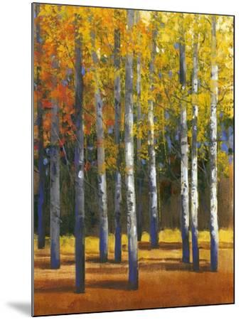 Fall in Glory I-Tim O'toole-Mounted Art Print