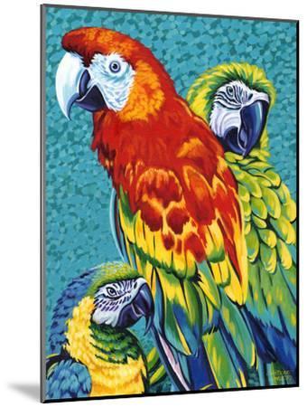 Birds in Paradise III-Carolee Vitaletti-Mounted Art Print