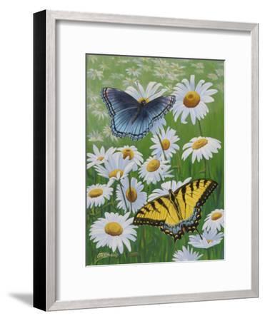 Butterflies and Daisies-Fred Szatkowski-Framed Art Print