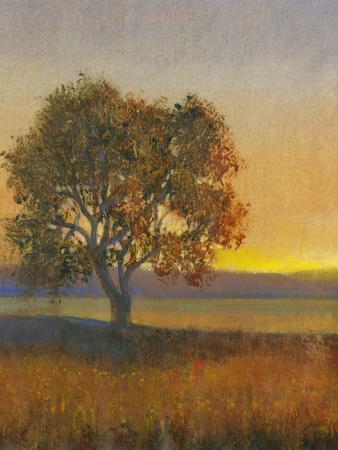 Firelight II-Tim O'toole-Art Print