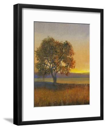 Firelight II-Tim O'toole-Framed Art Print