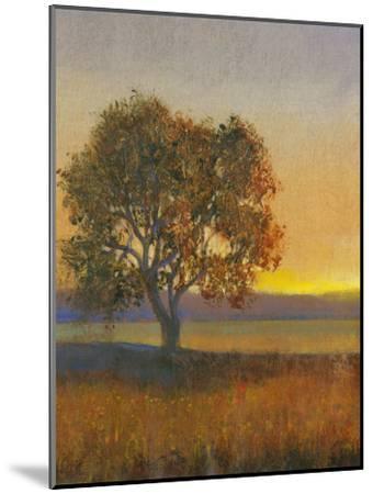 Firelight II-Tim O'toole-Mounted Art Print