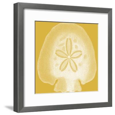 Saturated Shells I-Vision Studio-Framed Art Print