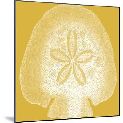 Saturated Shells I-Vision Studio-Mounted Art Print