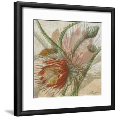 Desert Botanicals II-John Butler-Framed Art Print