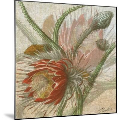 Desert Botanicals II-John Butler-Mounted Art Print