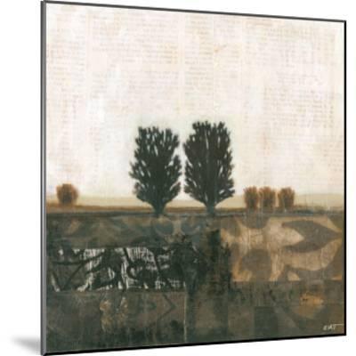 Global Landscape I--Mounted Art Print