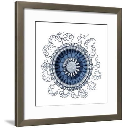 Ocean Gems III-Vision Studio-Framed Art Print