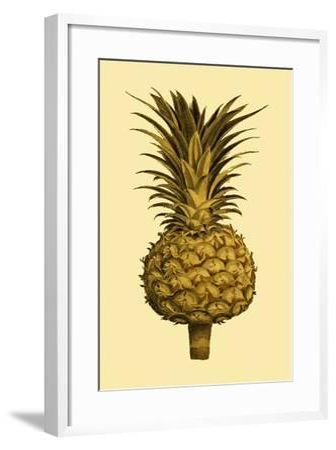 Sepia Pineapple II--Framed Art Print