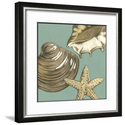 Small Shell Trio on Blue IV-Megan Meagher-Framed Art Print