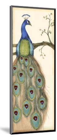 Small Rebecca's Peacock I-Jennifer Goldberger-Mounted Art Print