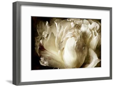 Elegant Peony I-Christine Zalewski-Framed Art Print