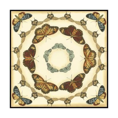 Small Butterfly Collector II-Chariklia Zarris-Framed Art Print