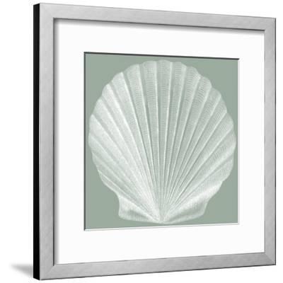 Seabreeze Shells II-Vision Studio-Framed Art Print