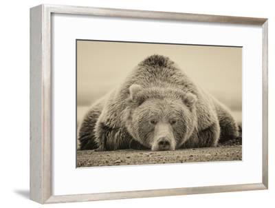Deep Sleep-PHBurchett-Framed Art Print