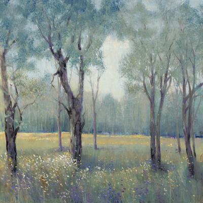 Morning Mist-Tim OToole-Framed Art Print