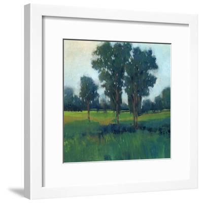 Afternoon Sun II--Framed Art Print