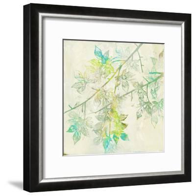 Merged Maple II-Jennifer Goldberger-Framed Art Print