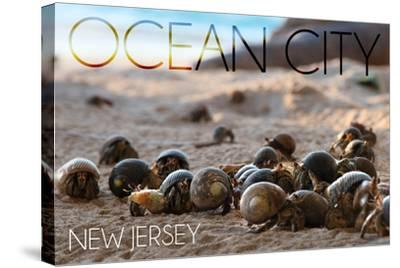 Ocean City, New Jersey - Group of Hermit Crabs-Lantern Press-Stretched Canvas Print