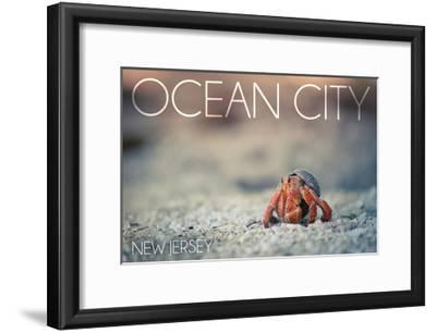 Ocean City, New Jersey - Hermit Crab on Beach-Lantern Press-Framed Art Print