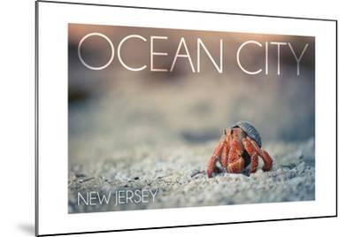 Ocean City, New Jersey - Hermit Crab on Beach-Lantern Press-Mounted Art Print
