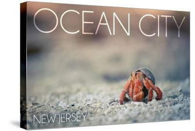 Ocean City, New Jersey - Hermit Crab on Beach-Lantern Press-Stretched Canvas Print