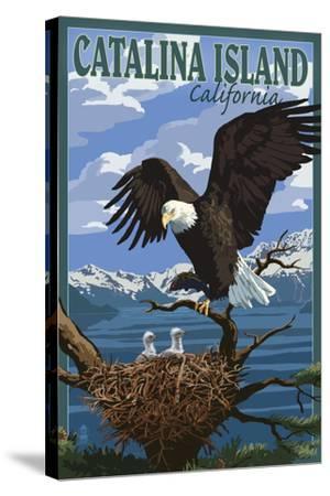 Catalina Island, California - Bald Eagle and Chicks-Lantern Press-Stretched Canvas Print
